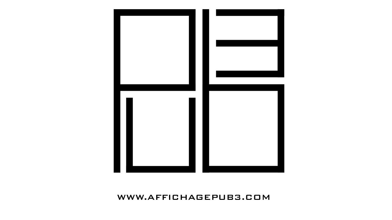 Logo Pub³